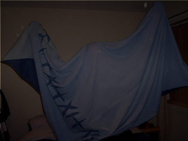 Click image for larger version  Name:duvet ghost 004 copy.jpg Views:135 Size:50.7 KB ID:10031