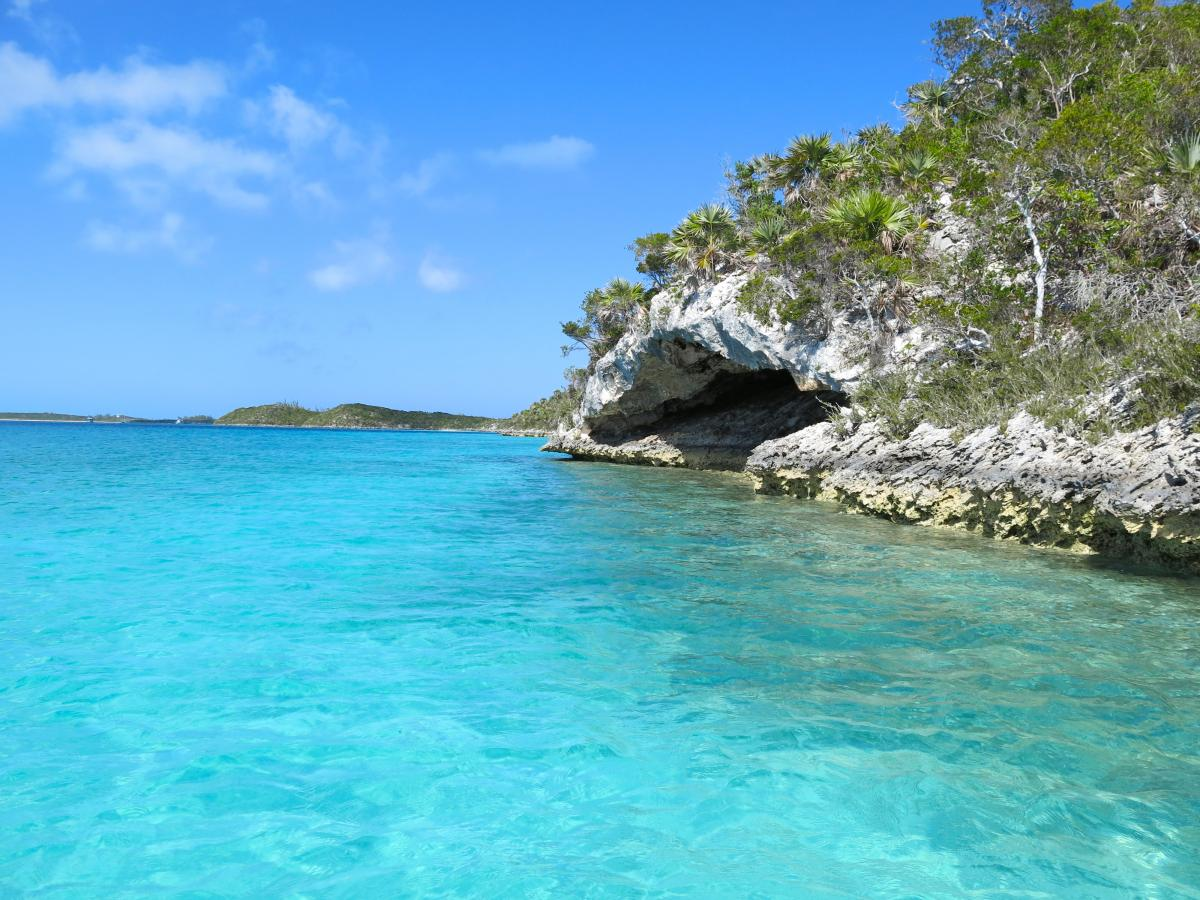 Click image for larger version  Name:normans-cay-bahamas-cave.jpg Views:100 Size:175.6 KB ID:107848