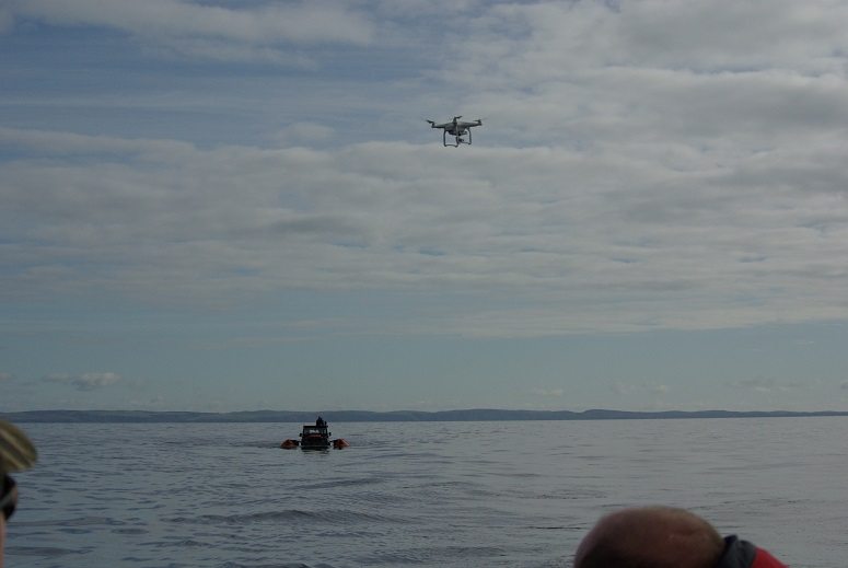 Click image for larger version  Name:Drone away.jpg Views:162 Size:114.4 KB ID:109985