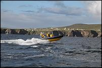 Click image for larger version  Name:Merlin off the Antrim Coast (2).jpg Views:116 Size:124.6 KB ID:127342