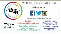 Click image for larger version  Name:balto and co.jpg Views:64 Size:70.8 KB ID:130148
