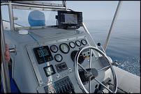 Click image for larger version  Name:Argonauta-6.jpg Views:234 Size:103.8 KB ID:131527