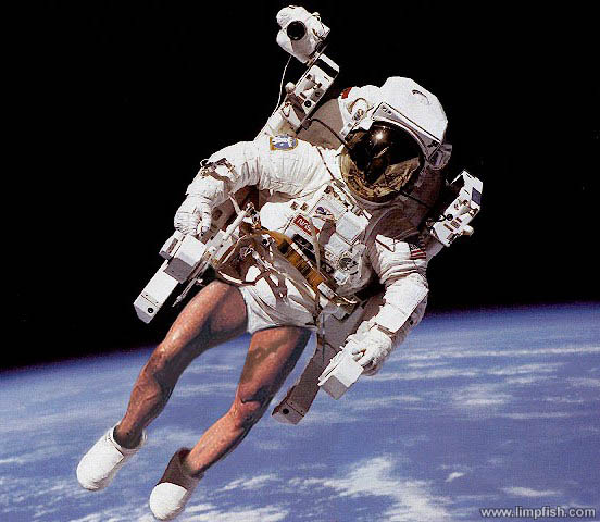 Click image for larger version  Name:space_walk.jpg Views:110 Size:60.3 KB ID:13859