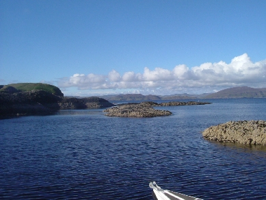 Click image for larger version  Name:staffa.jpg Views:113 Size:90.9 KB ID:15109