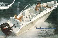 Click image for larger version  Name:sea fox 1.jpg Views:164 Size:155.3 KB ID:22517