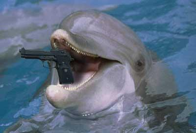 Click image for larger version  Name:dolphin.JPG Views:111 Size:12.7 KB ID:24951