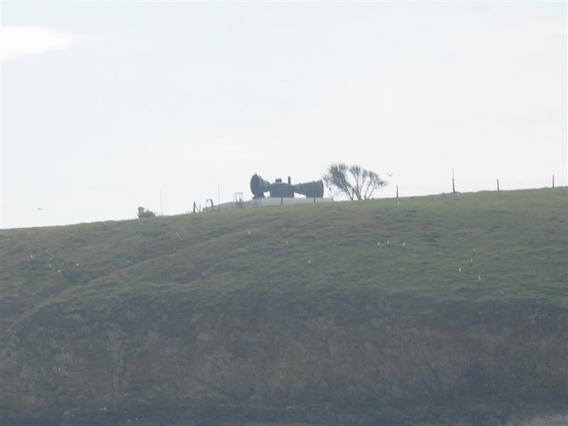 Click image for larger version  Name:Fog Horn Med.JPG Views:153 Size:30.6 KB ID:26368
