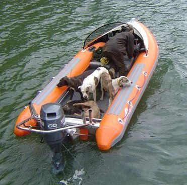 Click image for larger version  Name:orange sport - dogs and pigs.jpg Views:187 Size:33.8 KB ID:27407