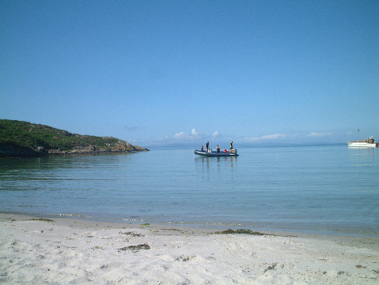 Click image for larger version  Name:gigha3.jpg Views:343 Size:87.8 KB ID:2832