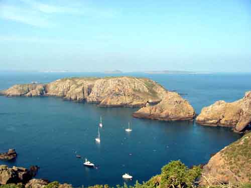 Click image for larger version  Name:sark4.JPG Views:286 Size:15.2 KB ID:30955