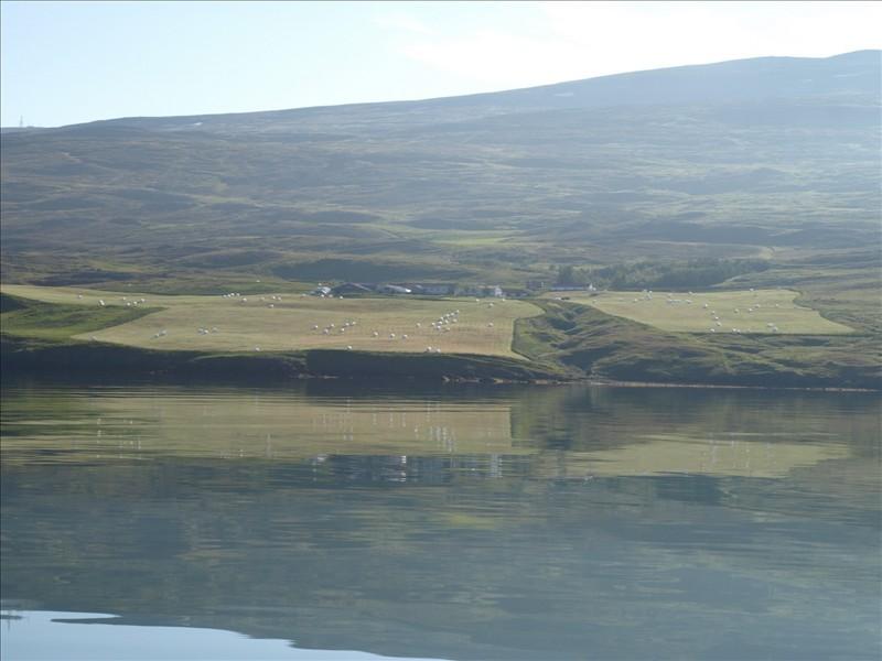 Click image for larger version  Name:Saudarkrokur - Akureyri 08.jpg Views:104 Size:96.4 KB ID:35820