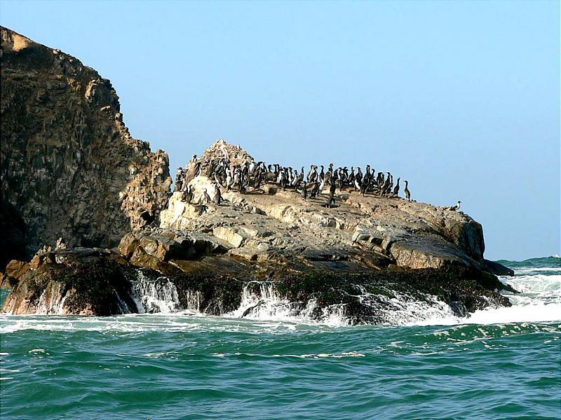 Click image for larger version  Name:Laguna Grande 02.jpg Views:136 Size:104.7 KB ID:35828