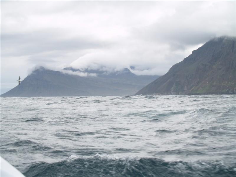 Click image for larger version  Name:Seydisfjordur - Eskifjordur 10.jpg Views:91 Size:94.5 KB ID:36000