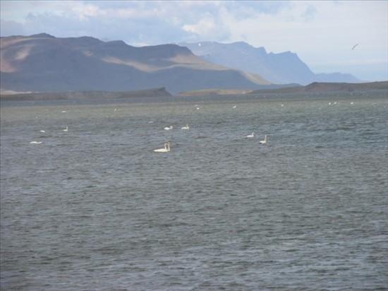 Click image for larger version  Name:Eskifjordur - Hofn 06.jpg Views:84 Size:56.0 KB ID:36022