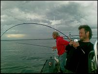 Click image for larger version  Name:fish.jpg Views:106 Size:46.0 KB ID:40564