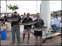 Click image for larger version  Name:yellowtail_prizes_feb_09_002abc.jpg Views:108 Size:62.1 KB ID:40590