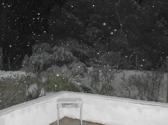 Click image for larger version  Name:snow.jpg Views:306 Size:25.4 KB ID:4346