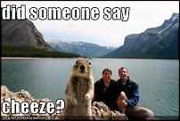 Click image for larger version  Name:funny-pictures-squirrel-wants-cheese.jpg Views:103 Size:29.7 KB ID:45021