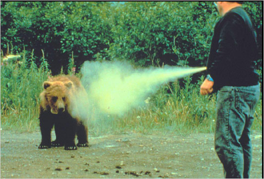 Click image for larger version  Name:bear%20spray.jpg Views:99 Size:62.1 KB ID:47497