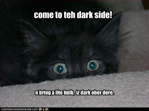 Click image for larger version  Name:funny-pictures-kitten-comes-to-dark-side.jpg Views:157 Size:25.5 KB ID:48063