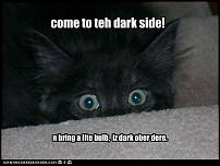 Click image for larger version  Name:funny-pictures-kitten-comes-to-dark-side.jpg Views:190 Size:25.5 KB ID:48063