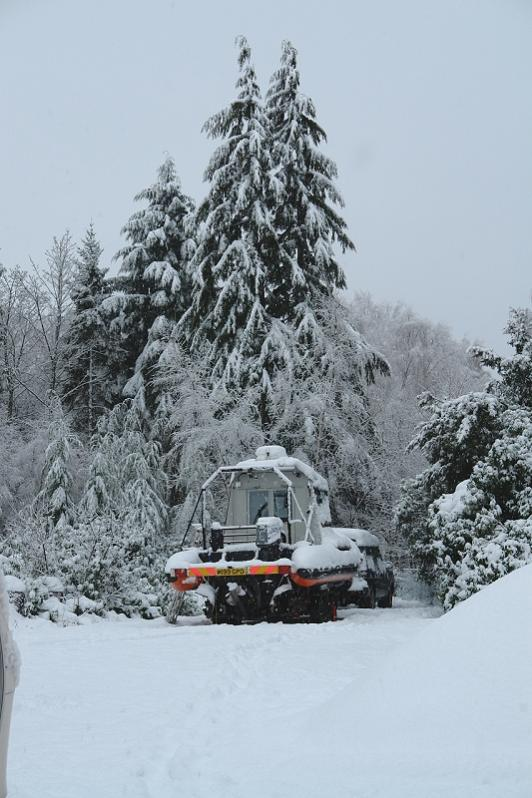 Click image for larger version  Name:Snowfall.jpg Views:477 Size:72.7 KB ID:48321