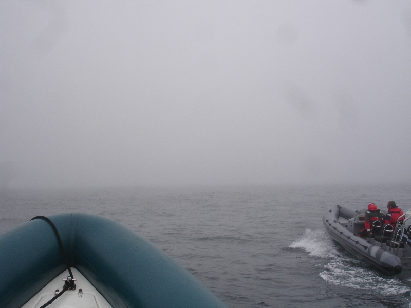 Click image for larger version  Name:fog.jpg Views:116 Size:162.5 KB ID:53023