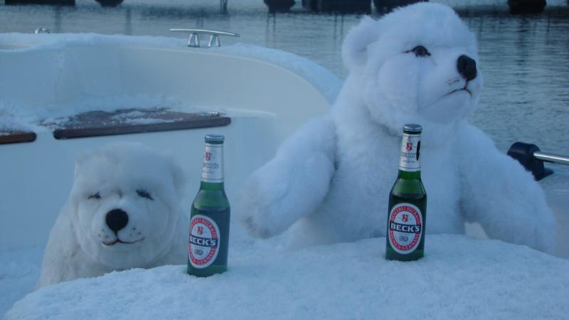 Click image for larger version  Name:polar bears 015.jpg Views:169 Size:30.1 KB ID:55011