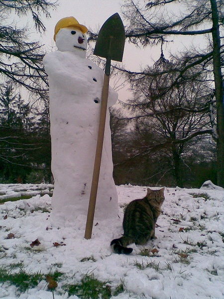 Click image for larger version  Name:Snowman.jpg Views:103 Size:155.4 KB ID:56119