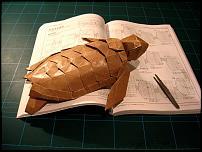 Click image for larger version  Name:Loggerhead Sea Turtle - Kamiya.jpg Views:84 Size:72.2 KB ID:57077