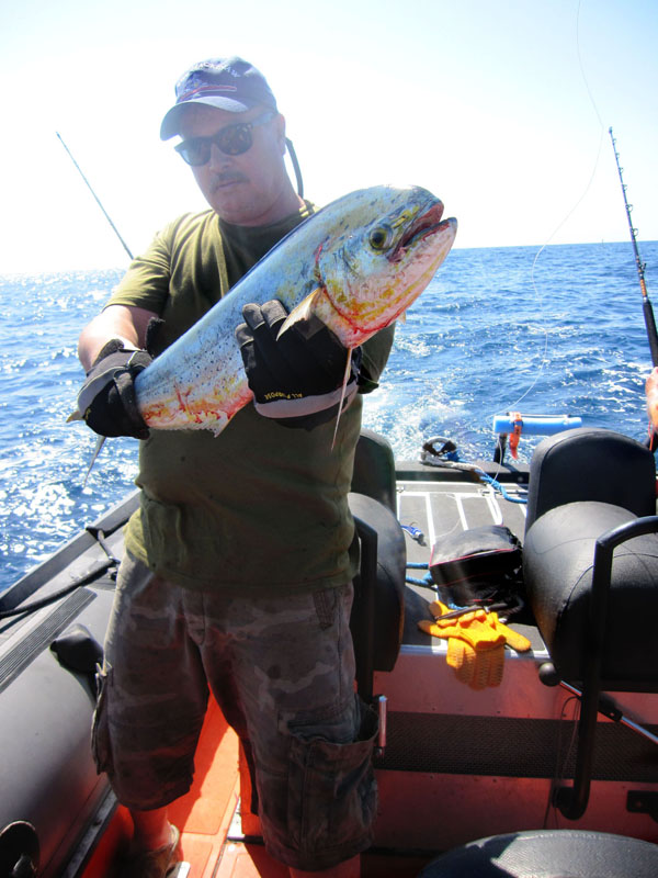 Click image for larger version  Name:Randy&Dolphin.jpg Views:212 Size:148.3 KB ID:57494