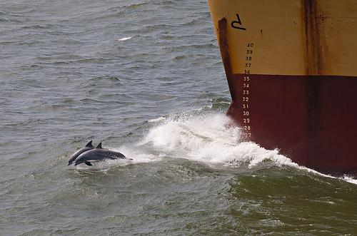 Click image for larger version  Name:tanker.jpg Views:109 Size:107.7 KB ID:59082