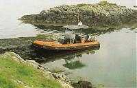 Click image for larger version  Name:Merganser with roof 1 x500.jpg Views:613 Size:34.8 KB ID:6600
