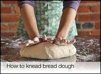 Click image for larger version  Name:Kneads.jpg Views:84 Size:67.1 KB ID:73025