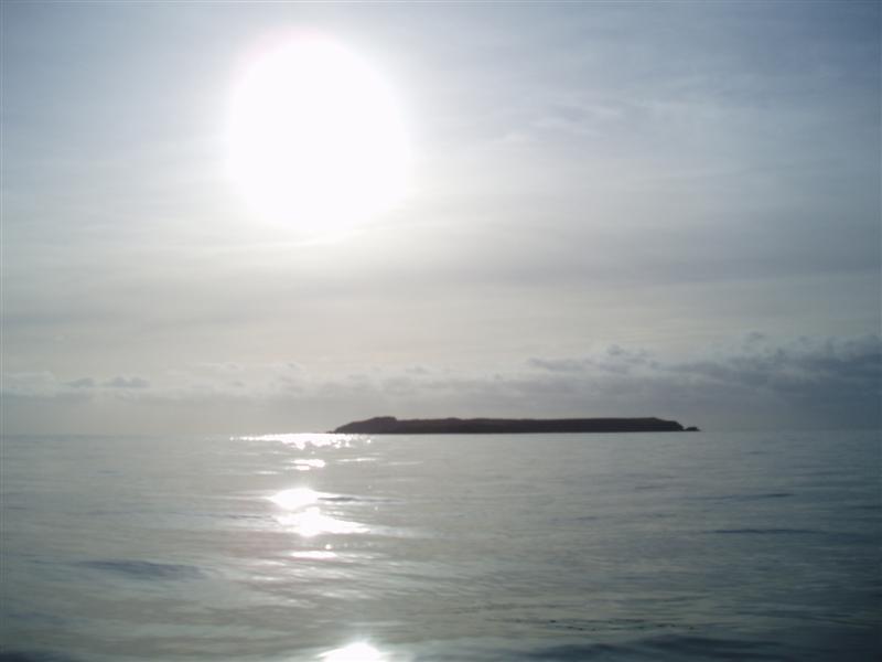 Click image for larger version  Name:Skokholm.jpg Views:257 Size:32.4 KB ID:75363