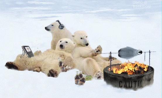 Click image for larger version  Name:Polar-Bear-BBQ-Penguin.jpg Views:117 Size:22.3 KB ID:76878