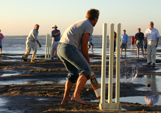 Click image for larger version  Name:cricket.jpg Views:266 Size:124.8 KB ID:7873