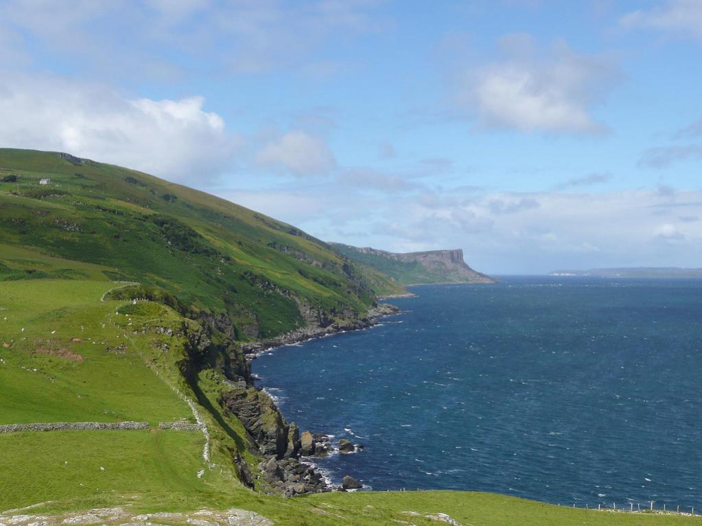 Click image for larger version  Name:Torr head.jpg Views:184 Size:82.8 KB ID:78753