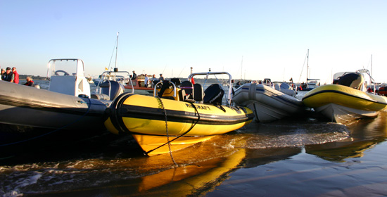 Click image for larger version  Name:Tifino zebedee and others beached on brambles bank.jpg Views:195 Size:78.7 KB ID:7876