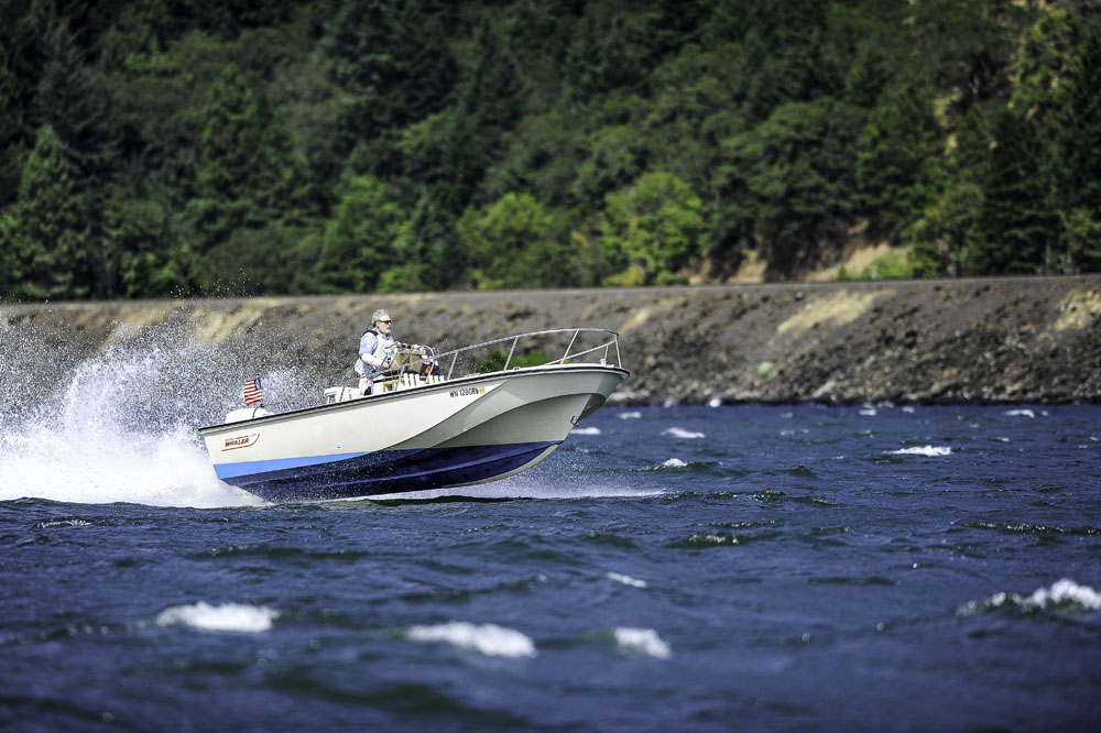 Click image for larger version  Name:Whaler.jpg Views:96 Size:174.7 KB ID:84412