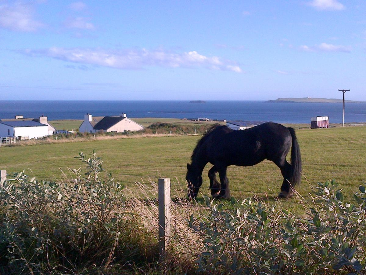 Click image for larger version  Name:Orkney Islands-20120930-01019.jpg Views:99 Size:188.1 KB ID:87953