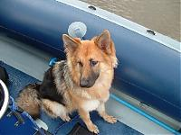 Click image for larger version  Name:cody boat sml2.jpg Views:202 Size:99.0 KB ID:8853
