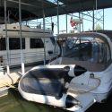 2011 Seamax Ocean 290