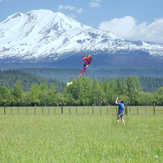 kite, inland OR