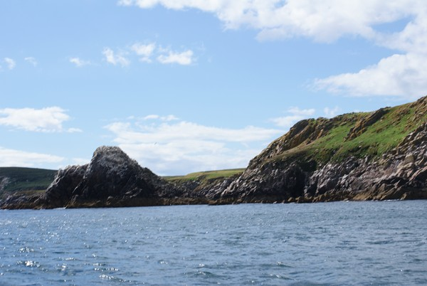Approaching our favourite snorkelling spot, Greater Saltee island.