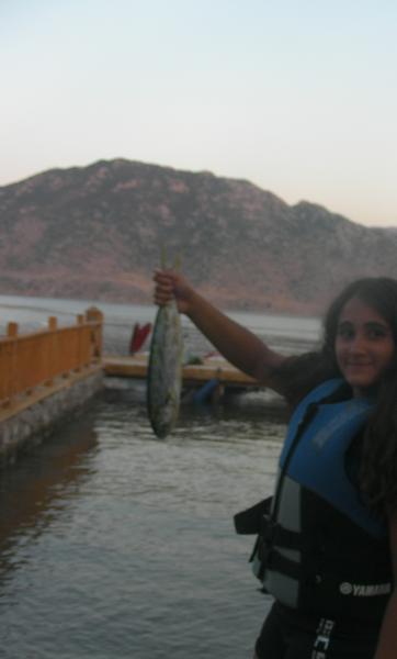lambuka fish(Selene's fish)