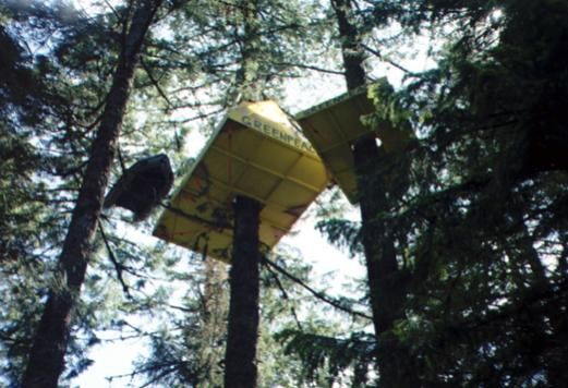 Inflatable boat used in a tree occupation in Oregon. Protecting old growth forest prior to a timber auction.