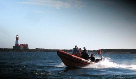 Farne Islands Ribcraft 6.8