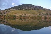 The Douro vineyards
