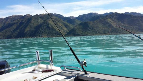 kaikoura fishing